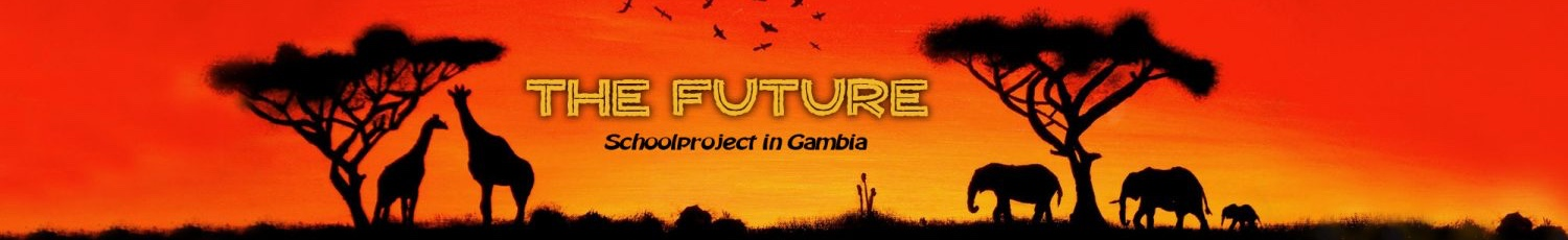 Stichting The Future Gambia